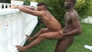 Zwei notgeile schwarze schwule Typen ficken