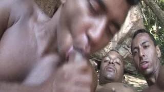 Groer schwarzer Schwanz Gaysex Videos mit groen