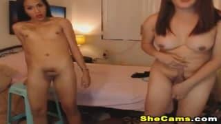 Zwei sexy Shemale masturbieren hart vor Cam